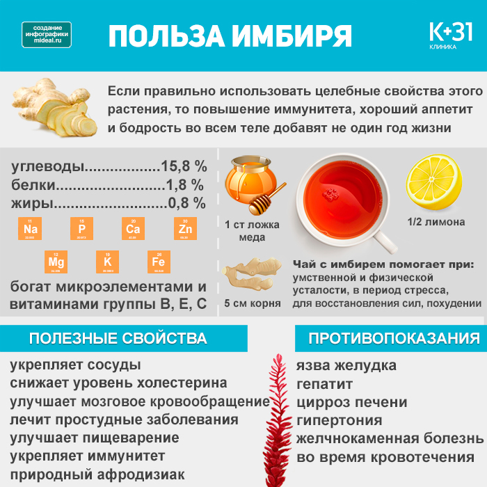 infographic benefits of ginger